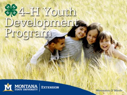 4-H Youth Development Program branded photo of children in tall grass