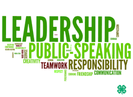 "Word cloud, featuring ""Leadership"", ""Public speaking"", and ""Responsibility"""